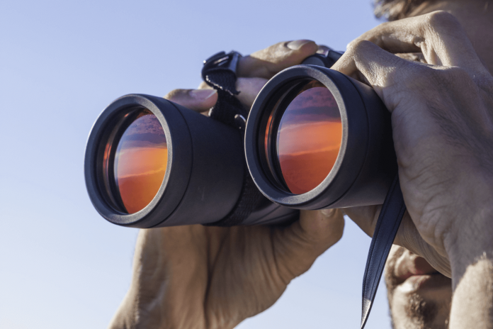 Differences between the 8x42 and the 10x42 Binoculars