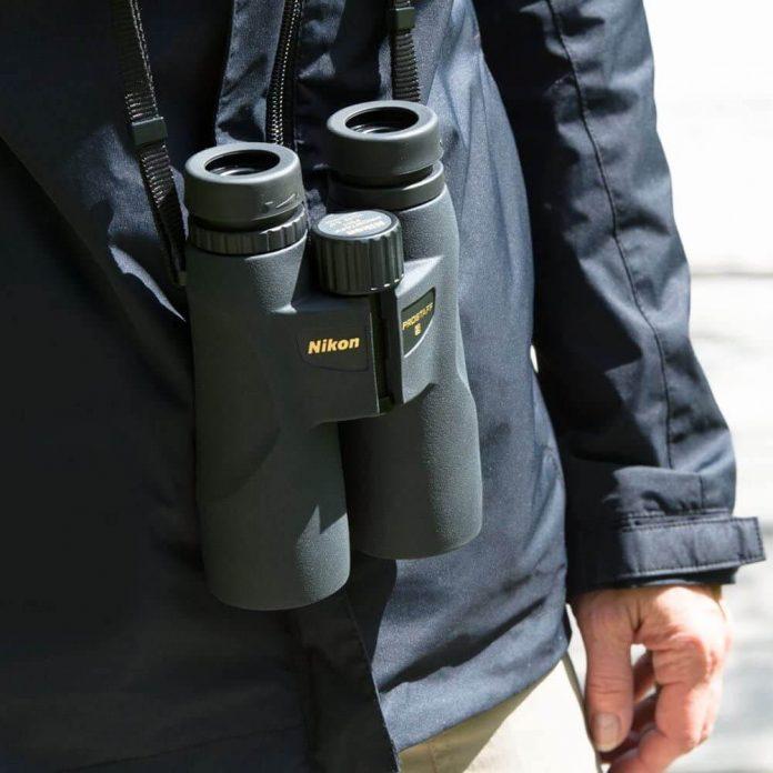 Vortex Diamondback vs. Nikon Prostaff 5